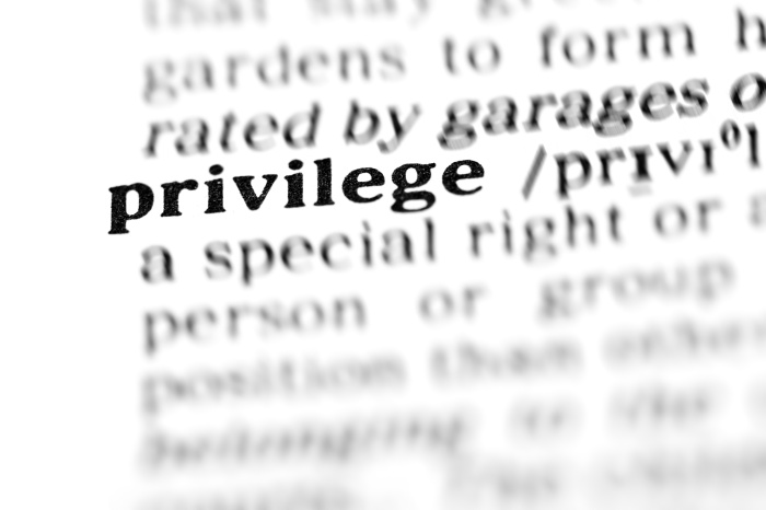 dictionary-privilege